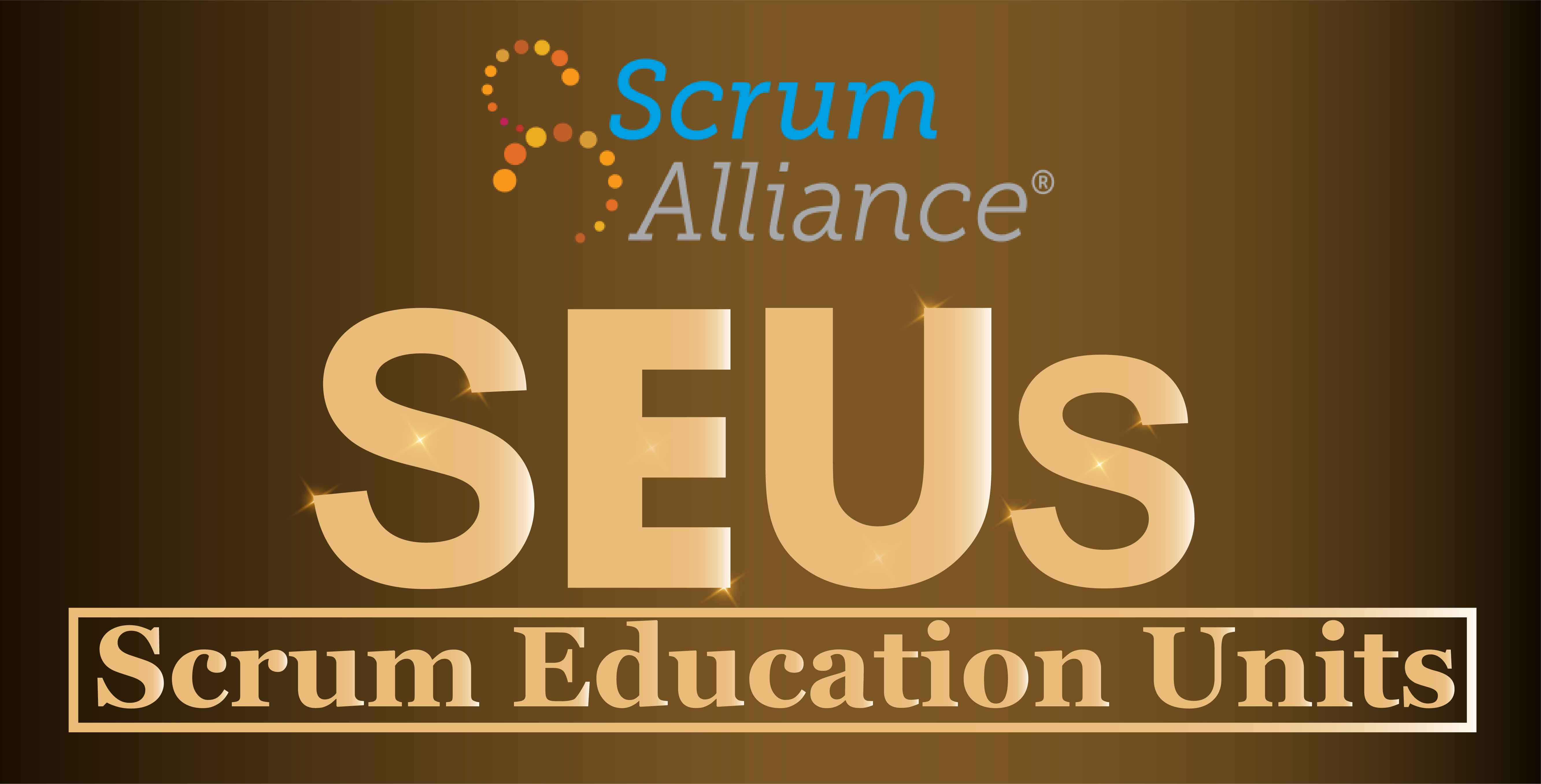 Earning SEUs – Understanding the Options to Maintain Your CSP® Certification